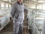 陈杰,2013年畜牧专业毕业。担任兰州正大天欣猪场场长,月薪1万元。
